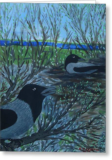 Inis Meain 5 Hooded Crows Greeting Card by Roland LaVallee