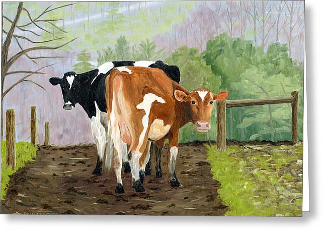 Inquisitive Cows Greeting Card