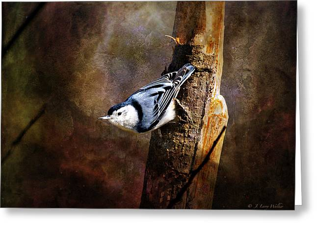 Greeting Card featuring the digital art Inquisitive Nuthatch by J Larry Walker