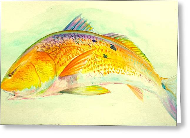 Inshore Gold  Greeting Card by Yusniel Santos
