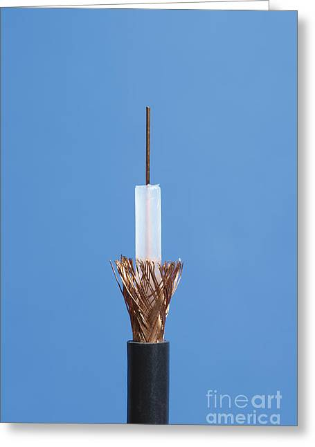 Inside Of Coaxial Cable Greeting Card