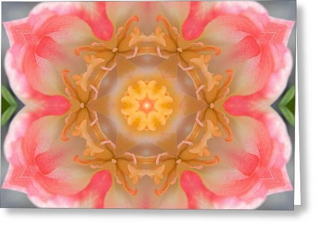 Inside Tulip Mandala Greeting Card