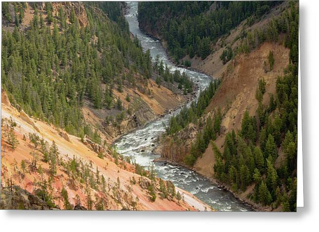 Inspiration Point, Yellowstone River Greeting Card by Michel Hersen
