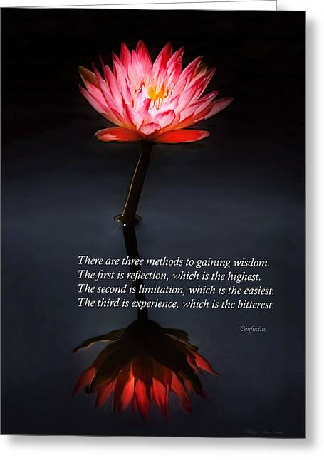 Inspirational - Reflection - Confucius Greeting Card by Mike Savad