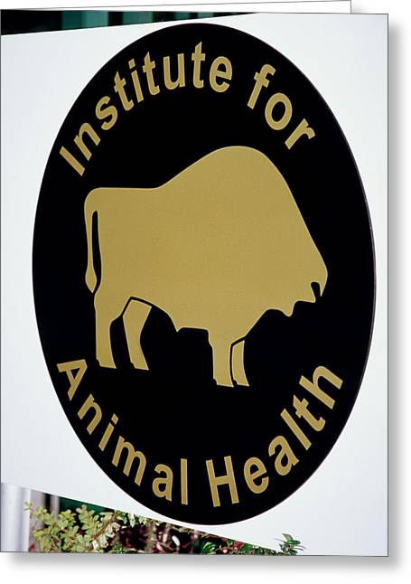 Institute For Animal Health Sign Greeting Card by David Hay Jones/science Photo Library
