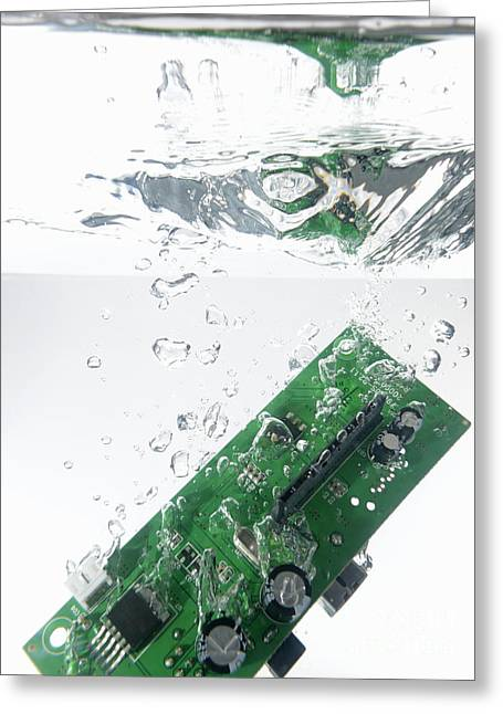 Integrated Circuit Underwater Greeting Card by Sami Sarkis