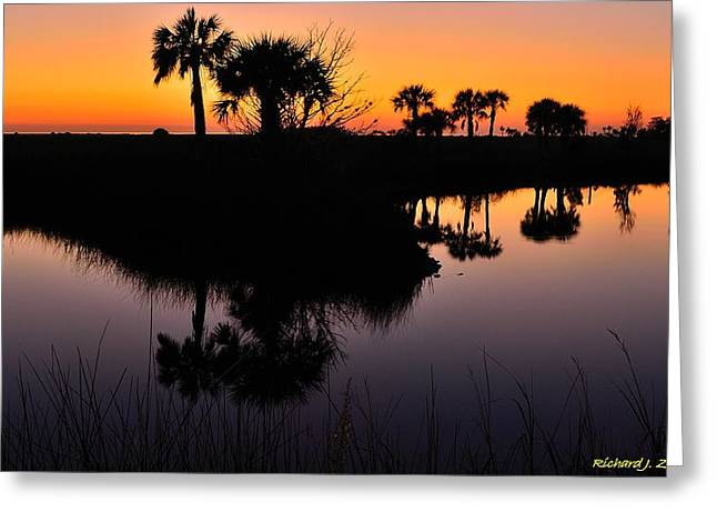 Greeting Card featuring the photograph Intense Reflections by Richard Zentner