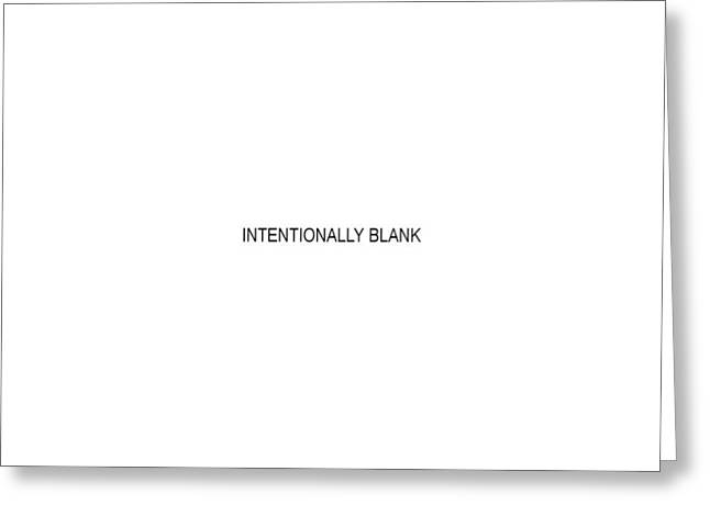 Intentionally Blank Greeting Card