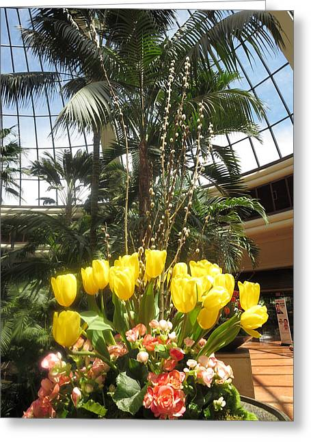 Interior Decorations Butterfly Gardens Vegas Golden Yellow Tulip Flowers Greeting Card by Navin Joshi