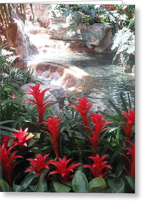 Interior Decorations Water Fall Flowers Lights Shades Greeting Card by Navin Joshi
