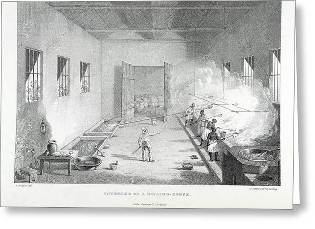 Interior Of A Boiling-house Greeting Card