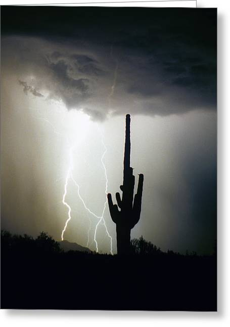 Intertwine Lightning Bolts And Saguaro Greeting Card