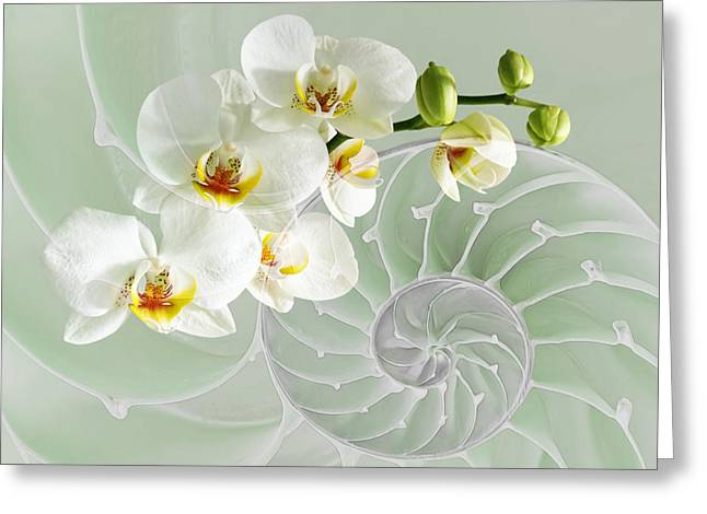 Intimate Fusion In Cool Green Greeting Card by Gill Billington