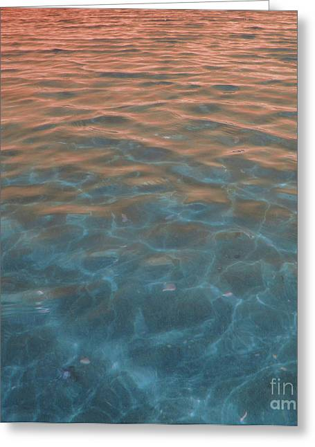 Into The Blue At Sunset Greeting Card by Cindy Lee Longhini