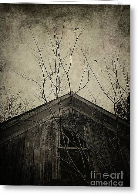 Into The Dark Past Greeting Card by Trish Mistric