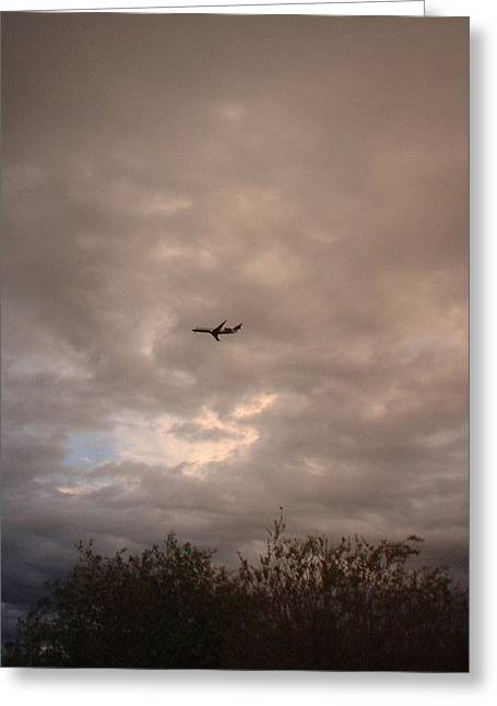 Into The Evening Sky Greeting Card by Yvette Pichette