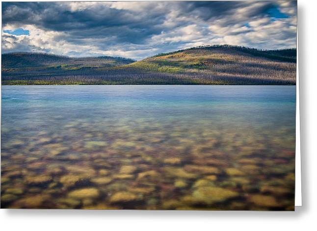 Into The Lake Greeting Card by Greg Nyquist