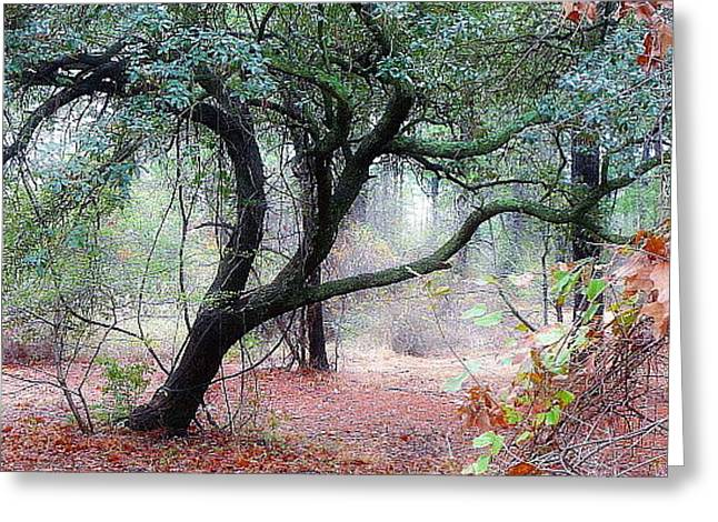 Greeting Card featuring the photograph Into The Mist by Jim Whalen