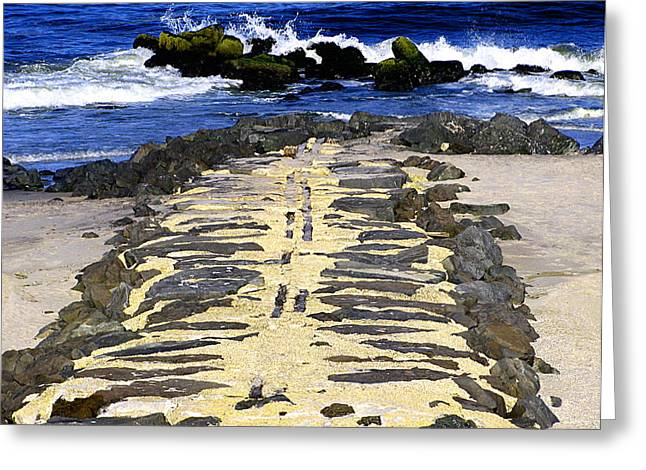 Into The Sea Greeting Card by Colleen Kammerer