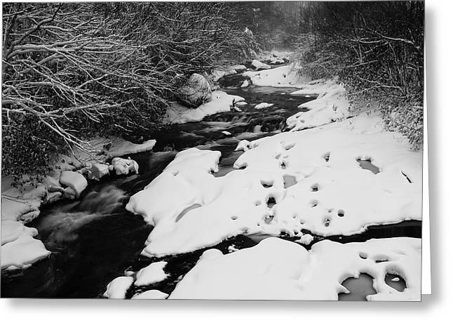 Into The Snowy Wilderness Greeting Card