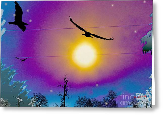 Into The Sun Greeting Card by Bobby Hammerstone