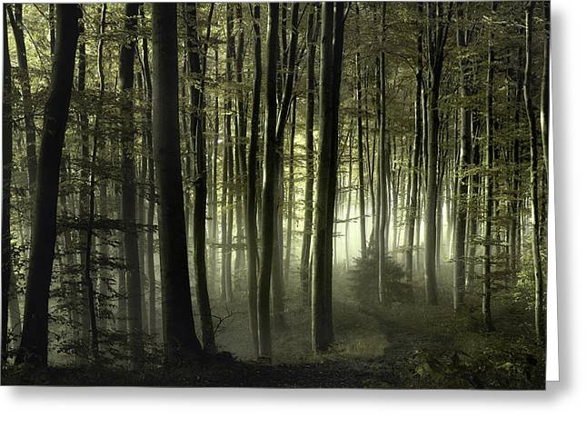 Into The Unknown Greeting Card