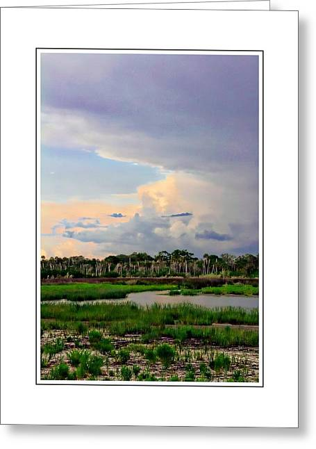 Intracoastal Colours Greeting Card by Alice Gipson
