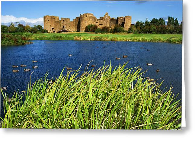 Ireland, Roscommon Greeting Card by Jaynes Gallery