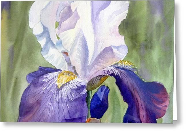 Iris     Greeting Card by Irina Sztukowski