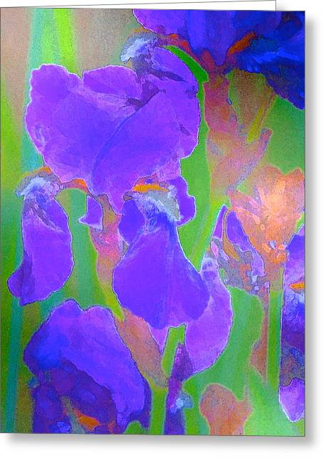 Iris 59 Greeting Card by Pamela Cooper