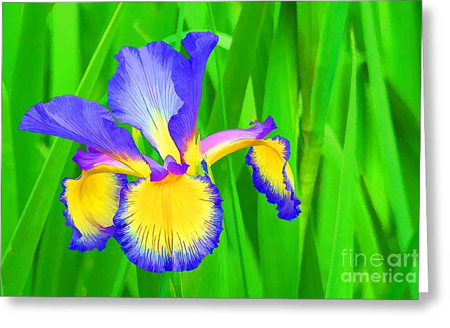 Iris Blossom Greeting Card by Teresa Zieba