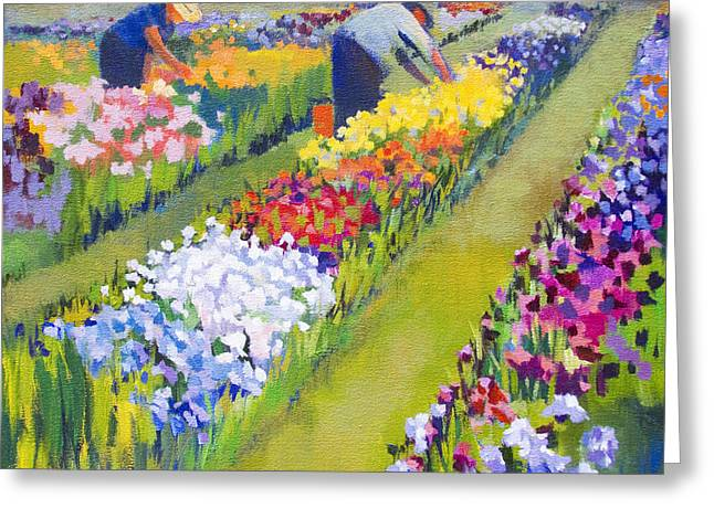 Iris Farm Greeting Card by Bernard Marks