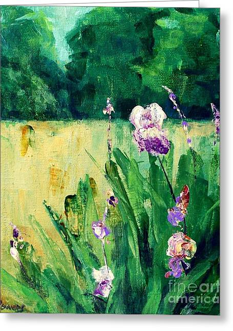 Iris Field Greeting Card by Mary Lynne Powers