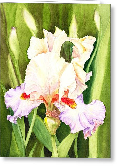 Iris Flower Dancing Petals Greeting Card by Irina Sztukowski
