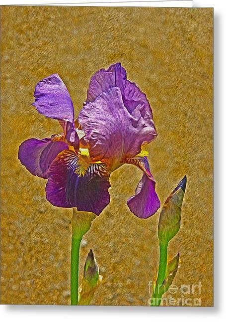 Iris Flower Greeting Card by Nur Roy