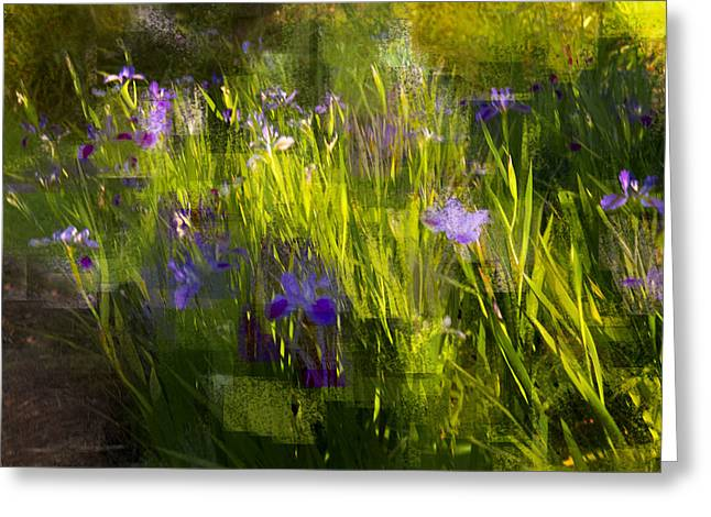 Greeting Card featuring the photograph Iris Garden  by Linde Townsend
