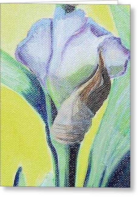 Iris In Bloom Greeting Card by Melissa Torres