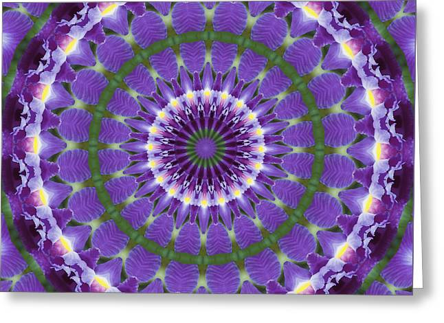 Greeting Card featuring the photograph Iris Kaleidoscope  by Denise Beverly