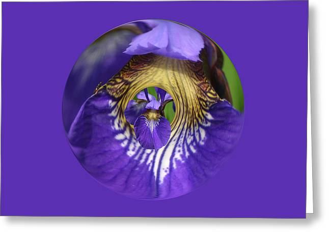 Iris Leaf Loop Greeting Card