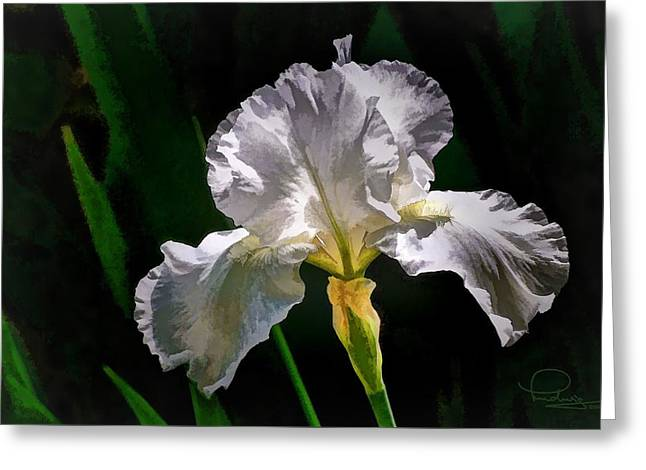 Iris Greeting Card by Ludwig Keck