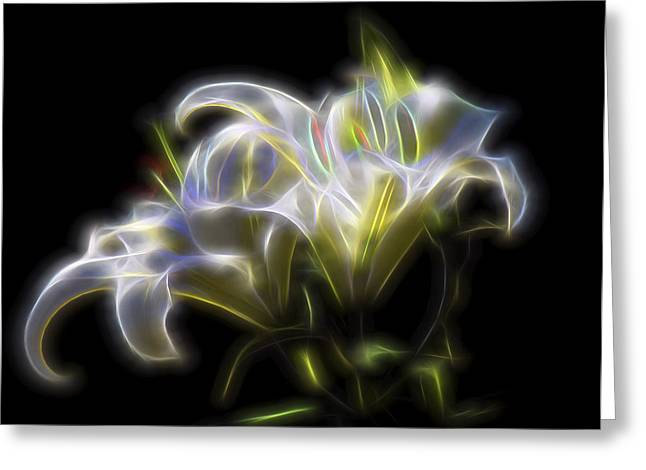 Iris Of The Eye Greeting Card by William Horden