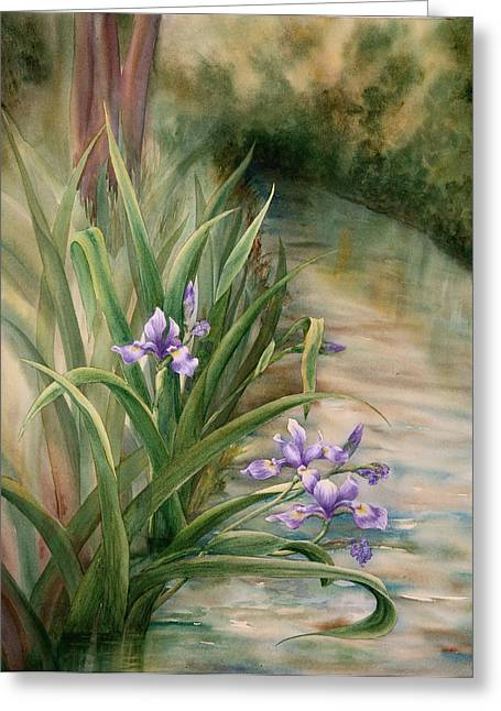 Iris Over The Inlet Greeting Card