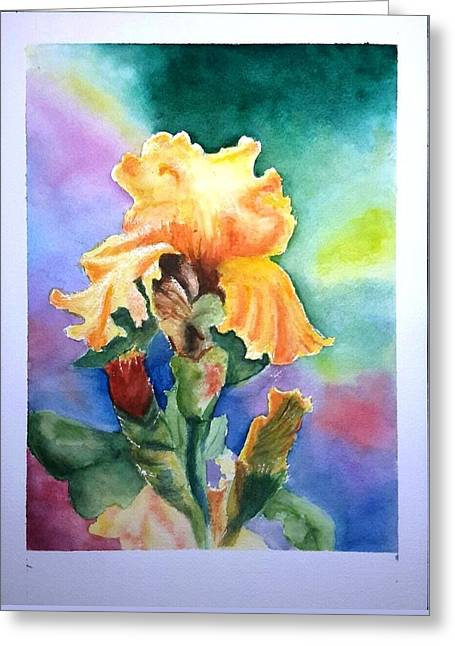 Iris Sold Greeting Card by Richard Benson