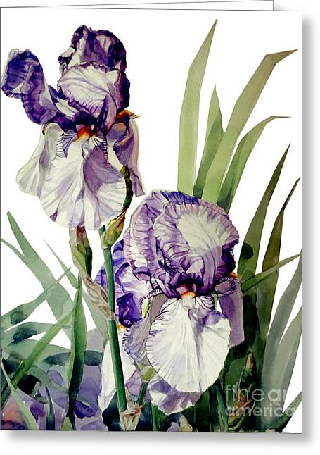 Watercolor Of A Tall Bearded Iris In Violet And White I Call Iris Selena Marie Greeting Card