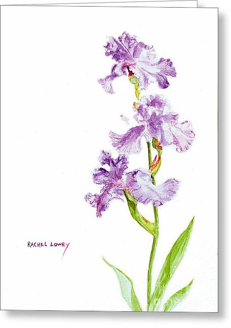 Iris Trio Greeting Card