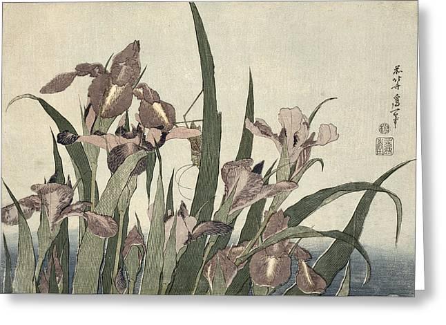 Irises And Grasshopper Greeting Card by Katsushika Hokusai