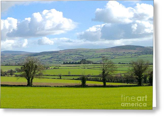 Irish Spring Greeting Card by Suzanne Oesterling