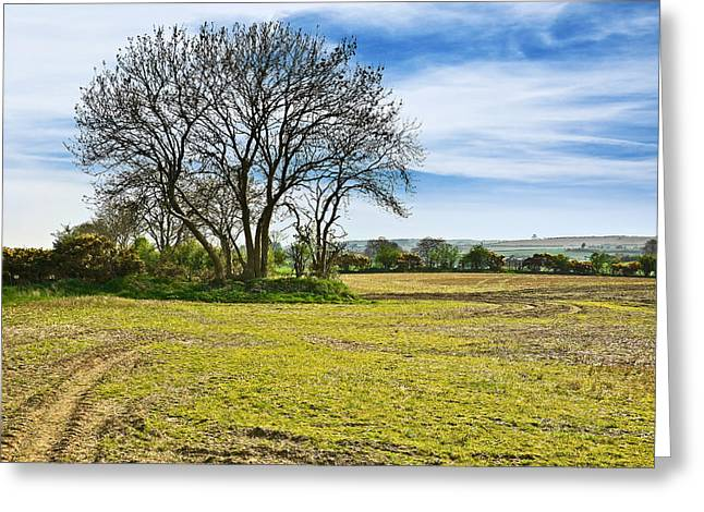 Greeting Card featuring the photograph Irish Springtime by Jane McIlroy