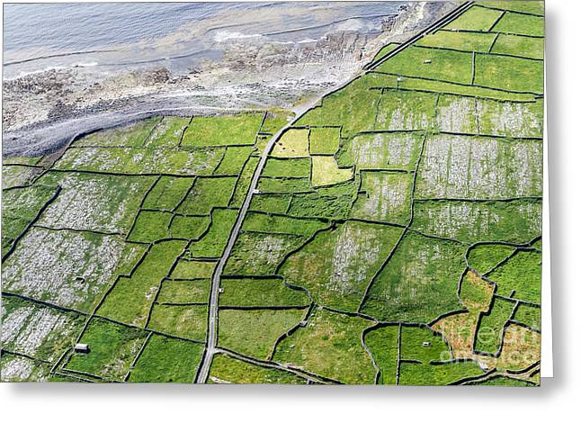 Irish Stone Walls Greeting Card by Juergen Klust