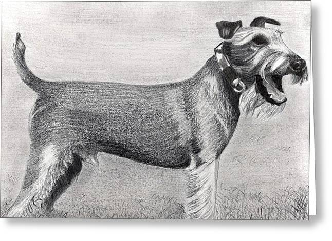Irish Terrier Dog Portrait Greeting Card by Olde Time  Mercantile